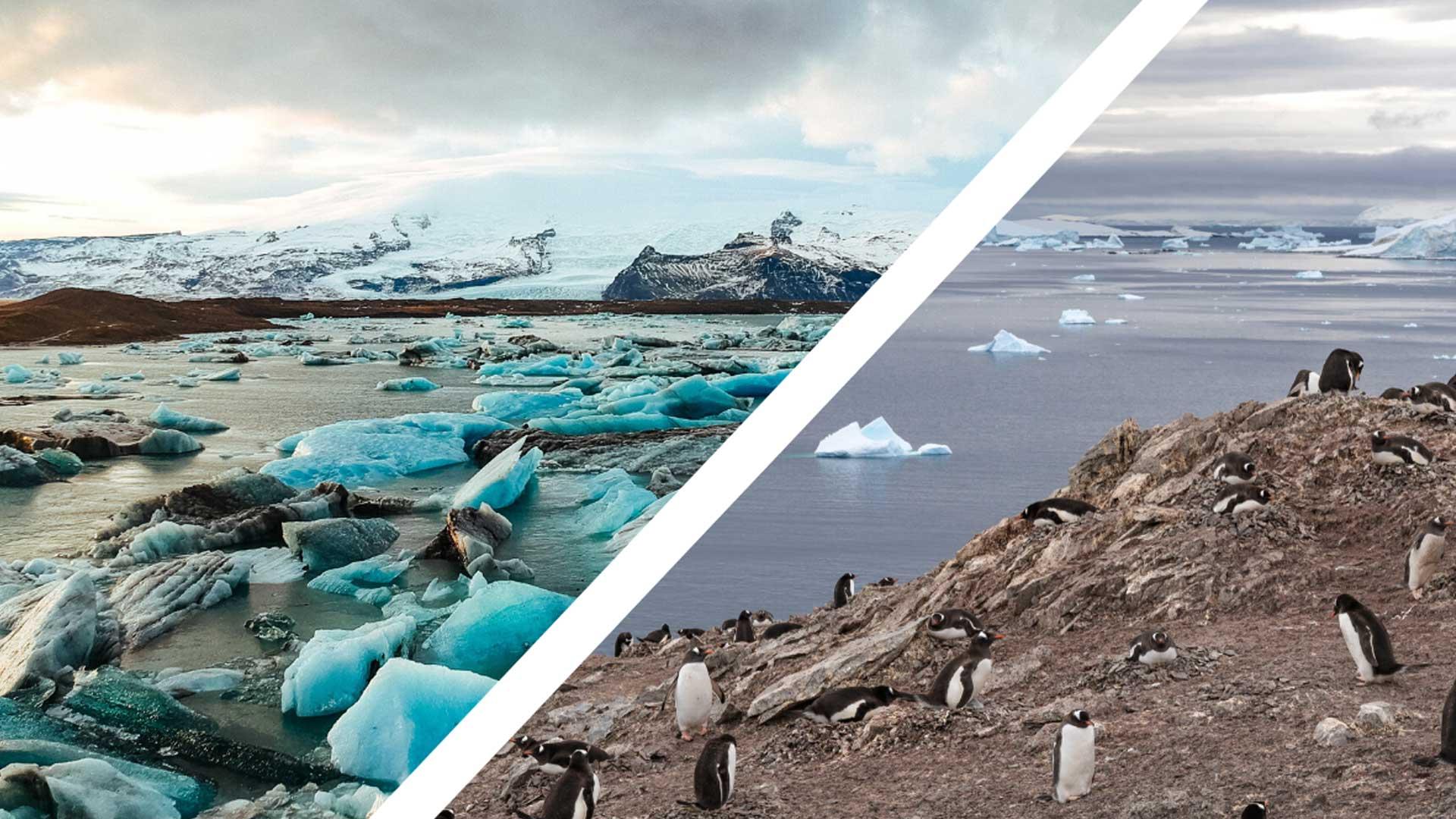 paysage antartique et arctique